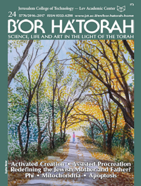 B'OR HA'TORAH 24