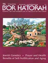 B'OR HA'TORAH 16